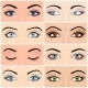 Set of Female Eyes and Brows Image - GraphicRiver Item for Sale