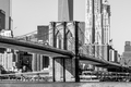 brooklyn bridge and new york city manhattan skyline - PhotoDune Item for Sale