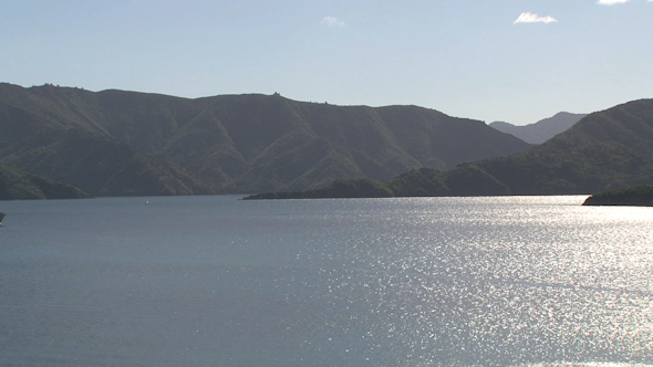 VideoHive Picton Ferry New Zealand 4 10073169