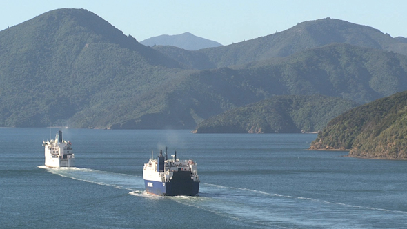 VideoHive Ferries Leaving Harbor Picton New Zealand 3 10073160