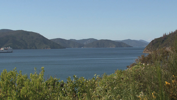 VideoHive Ferry Leaving Picton New Zealand 2 10073272