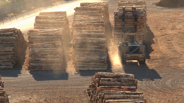 VideoHive Wood Factory 10073317