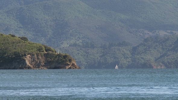 VideoHive Picton New Zealand 13 10073304