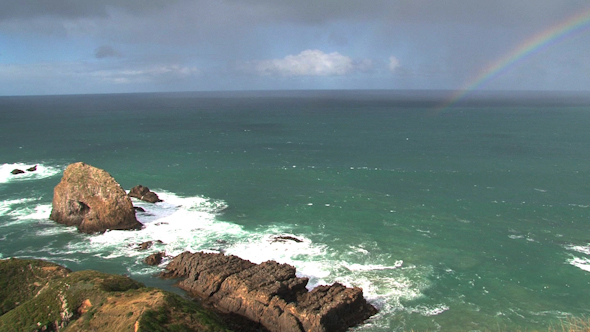 Nugget Point 08
