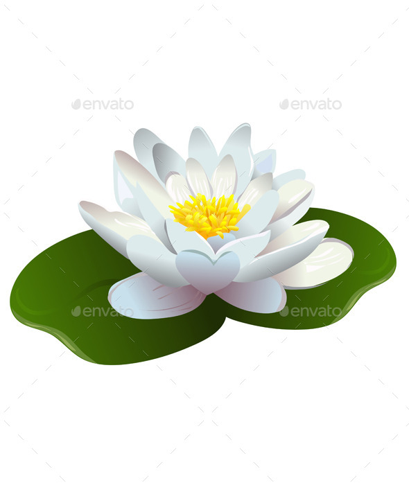 GraphicRiver Lotus Flower 10080081