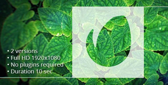 Green Reveal