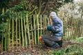 Gardener pruning tree - PhotoDune Item for Sale
