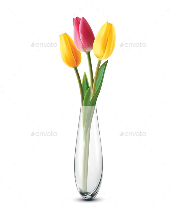 GraphicRiver Bouquet of Tulips 10087978