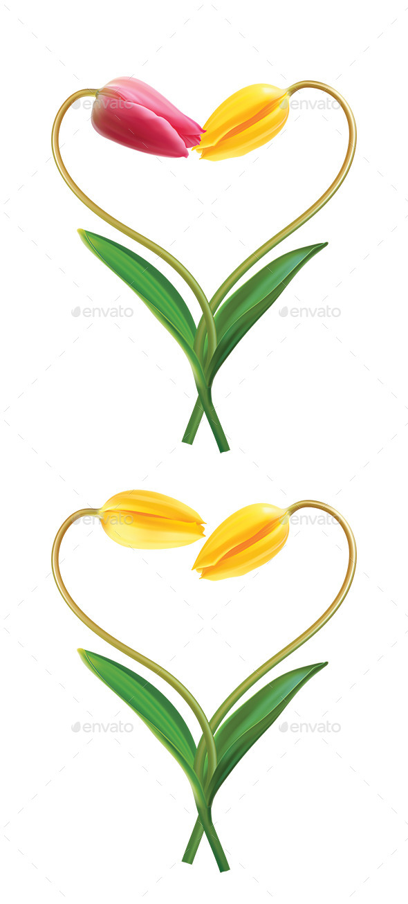 GraphicRiver Heart From Two Tulips 10087986