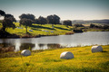 Hay Bales - PhotoDune Item for Sale