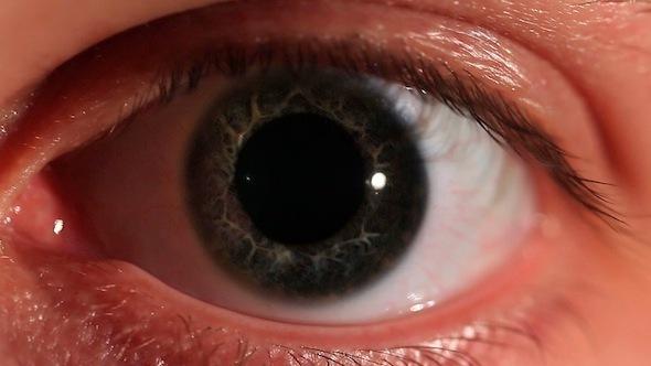 Eye 3-Pack