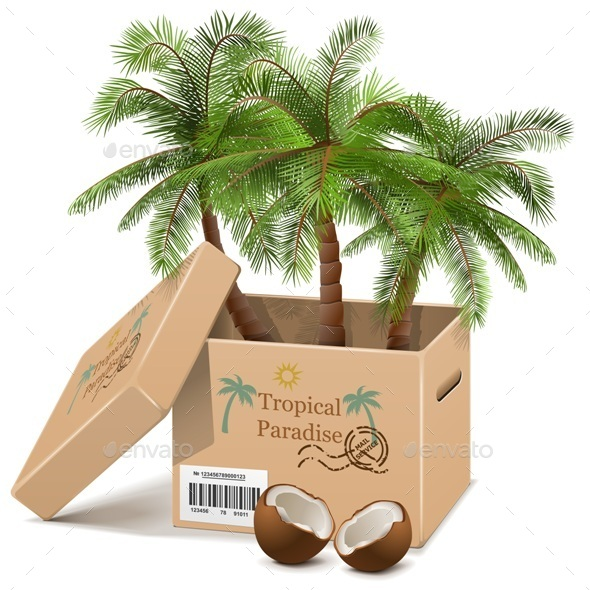 GraphicRiver Vector Palm Tree in Box 10098741