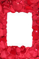 Frame of roses on Valentine's and mothers day with copyspace