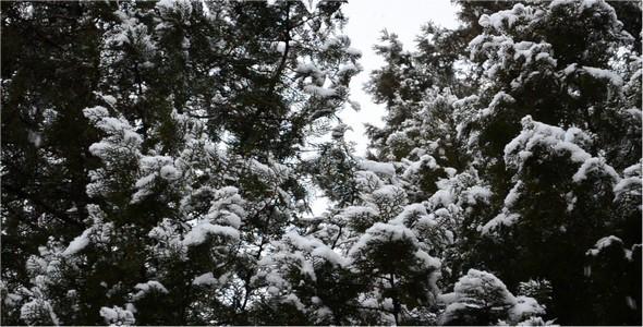 VideoHive Snow 10104590
