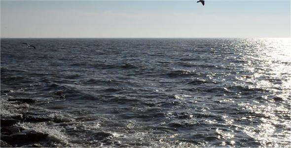 VideoHive Sea 2 10104623