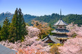 Yoshinoyama, Japan Spring Scene - PhotoDune Item for Sale