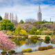 Shinjuku Park in the Spring - PhotoDune Item for Sale