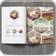 Multipurpose Clean Brochure / Catalog - GraphicRiver Item for Sale