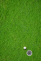 The ball at the hole on the golf course - PhotoDune Item for Sale