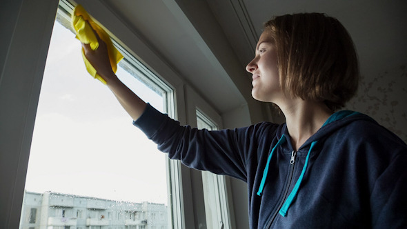 VideoHive Young Women Cleaning a Window 5 10112519