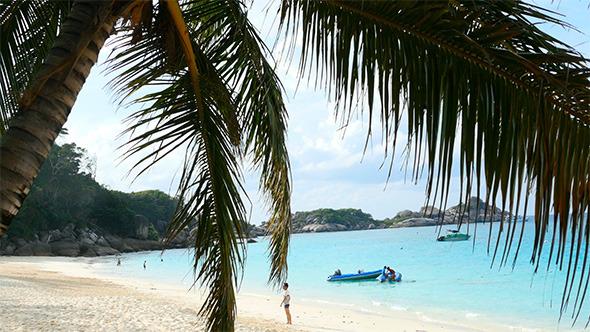 VideoHive Paradise Beach 10112760