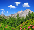 Dolomite peaks, Rosengarten - PhotoDune Item for Sale