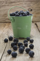 blueberries in a green bucket - PhotoDune Item for Sale