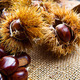 Chestnuts on an old board. - PhotoDune Item for Sale