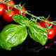 red tomatoes with basil leaf on black - PhotoDune Item for Sale