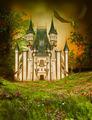 fantasy castle in the nicht