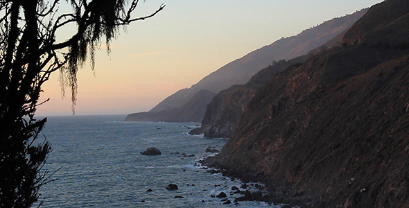 VideoHive Spanish Moss Sways over California Coast 10118357