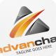 Advan Chart - Logo Template - GraphicRiver Item for Sale