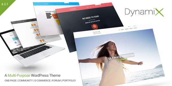 DynamiX - Business / Corporate Wordpress Theme - BuddyPress WordPress