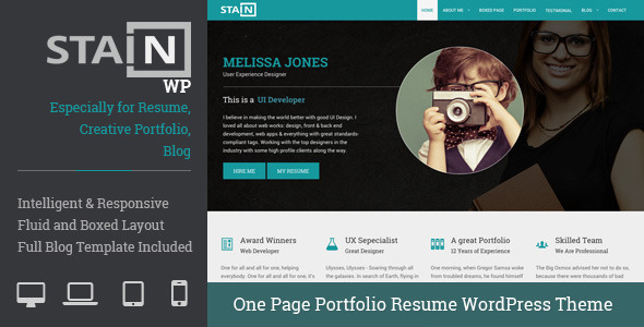 ThemeForest Stain One Page Portfolio Resume WordPress Theme 10062382