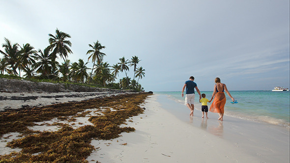 Family Of Three Walking Along The Beach In Tropics