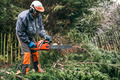 Professional gardener using chainsaw - PhotoDune Item for Sale