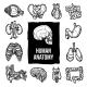 Anatomy Icons Set - GraphicRiver Item for Sale