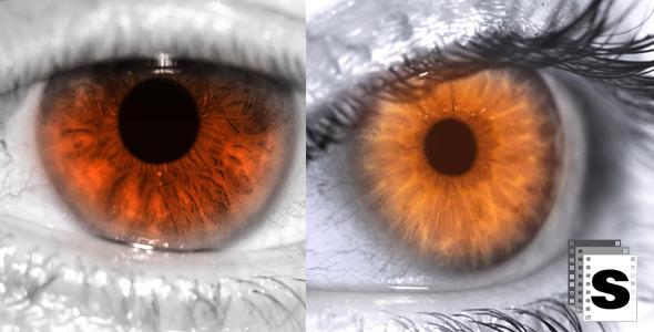 VideoHive Eye Red 10140162