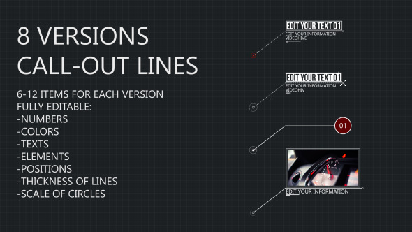 8 Line Call-Outs (Infographics)