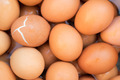 boiled egg - PhotoDune Item for Sale