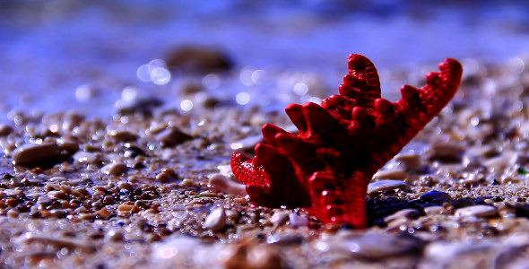 VideoHive Red Starfish 10151589