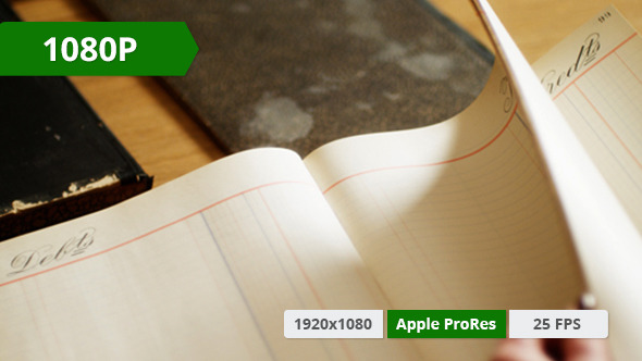 VideoHive Woman Looking Through Register 10155082