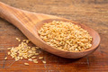 gold flax seeds - PhotoDune Item for Sale