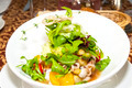 restaurant dish salad of octopus and greens and vegetables - PhotoDune Item for Sale