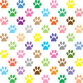 Colorful puppy paw prints - PhotoDune Item for Sale