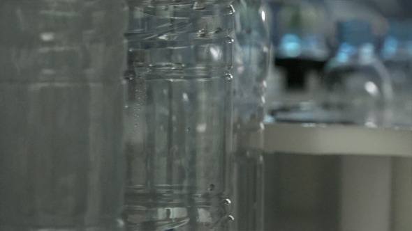 Pet or Plastic Bottles