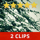 Winter Trees - VideoHive Item for Sale