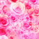 Valentine Roses - VideoHive Item for Sale
