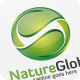 Nature Global / Leaf - Logo Template - GraphicRiver Item for Sale