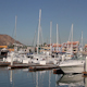 Harbour Cabo San Lucas Baja California Sur Mexico 3 - VideoHive Item for Sale